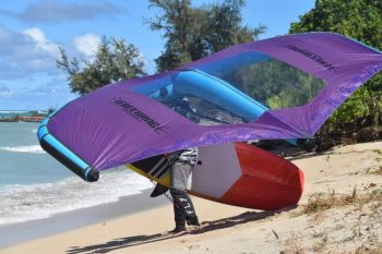 Freewing Wingsurf Session