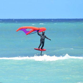 Freewing Wingsurfing Wings
